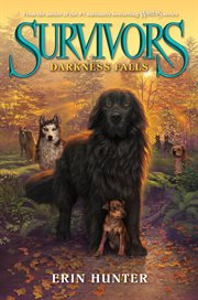 Darkness falls cover image