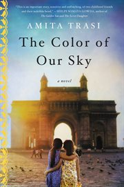 The Color of Our Sky : a Novel cover image
