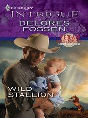 Wild stallion cover image