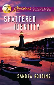 Shattered identity cover image