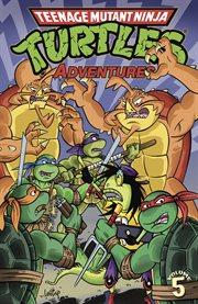 Teenage Mutant Ninja Turtles adventures. Issue 17-20 cover image