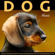 Dog Music: Relaxing Piano Music for Dogs