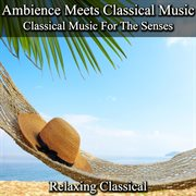 Ambience Meets Classical Music: Classical Music for the Senses