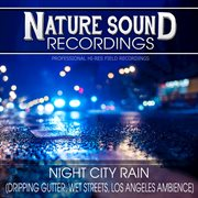 Night City Rain (dripping Gutter, Wet Streets, Los Angeles Ambience)