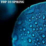 Top 20 spring cover image