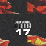 Music Collection. Electro House 17