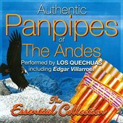 Authentic Panpipes of the Andes
