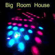 Big Room House