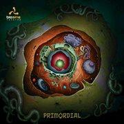Primordial cover image