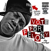 Vote for Felony