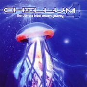 Chillum Vol. 4 - the Ultimate Tribal Ambient Journey