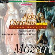 Wolfgang Amadeus Mozart: piano sonatas. Volume 5 cover image