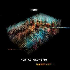 Cover image for Mortal Geometry