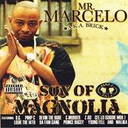Son of magnolia cover image