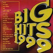 Big hits 1999 cover image
