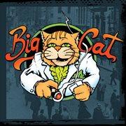 Big cat cover image