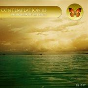 Contemplation 03