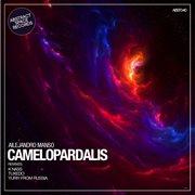 Camelopardalis