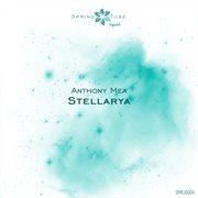 Stellarya