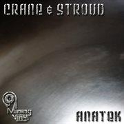 Anatek