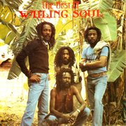 The best of the wailing souls cover image