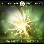 Electric Plants