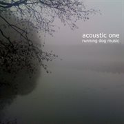 Acoustic One