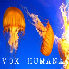 Cover image for Vox Humana