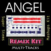 Angel (multi Tracks Tribute to Akon)