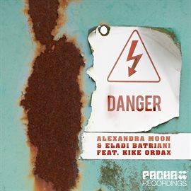 Cover image for Danger