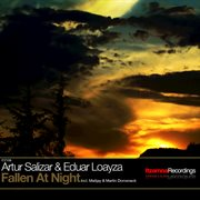 Fallen at night cover image