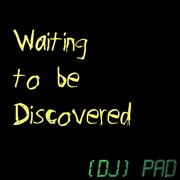 Waiting to be discovered cover image