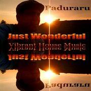 Just Wonderful (vibrant Housemusic)
