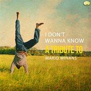 I Don't Wanna Know - A Tribute to Mario Winans - Single