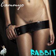 Rabbit cover image