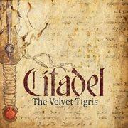 The Velvet Tigris