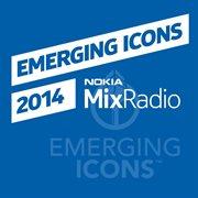 Emerging Icons 2014