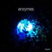 Enzymes - Single
