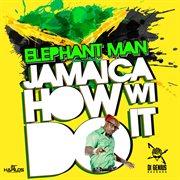 Jamaica How Wi Do It - Single
