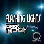 Flashing Lights (feat. Amber Noel) - Single