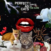 Perfect as Cats