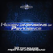 Hidden Dimensions of Psytrance (30 Top Sounds From the Underground)