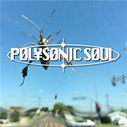 Polysonic Soul