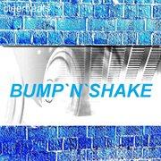 Bumpǹ̀ Shake - Single