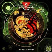 Sonic Prison