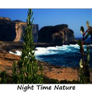 Night Time Nature