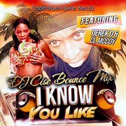 I Know You Like - Single