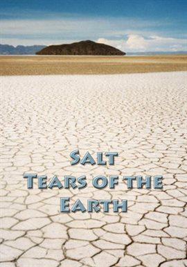 Salt - Tears of the Earth