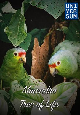 Almendro - Tree of Life