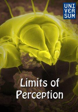 Limits of Perception /